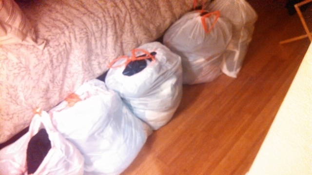 "These are a portion of the bags of clothes that are part of the ""Great Clothing Purge of 2013"""